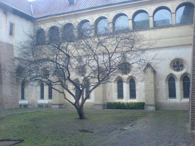 Монастир святої Анежки Чеської на Франтішку (kl ter sv. Ane ky esk Na Franti ku)