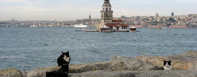 Вежі стамбул, туреччина: дівоча вежа, вежа галата, вежа беязіт. »Карта мандрівника