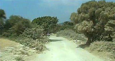 Сафарі по Акамаса. північний Кіпр