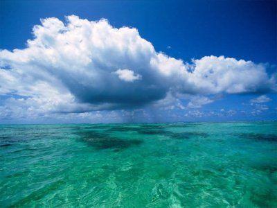 Географія світового океану. Частина 2