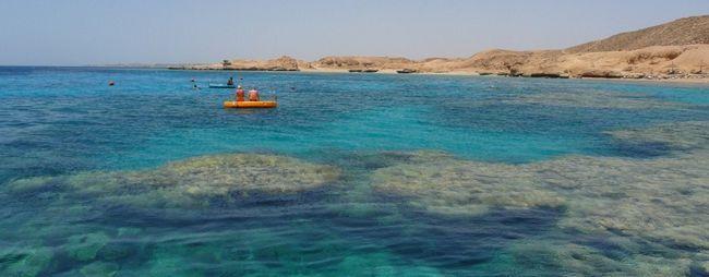 Яке море в шарм-ель-шейху, єгипет: омиває, фото і відео »карта мандрівника