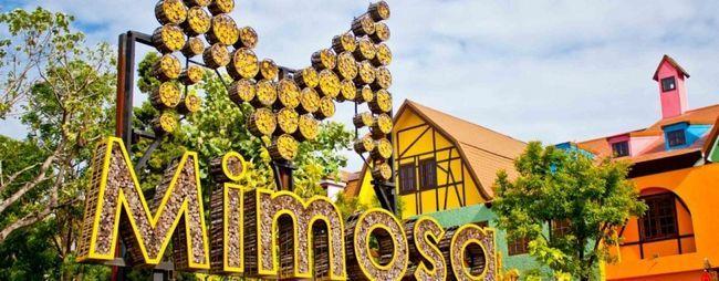 Мімоза в паттайя, тайланд: фото, відео, відгуки. Мімоза шоу паттайя. Торговельний і розважальний центр мімоза. »Карта мандрівника