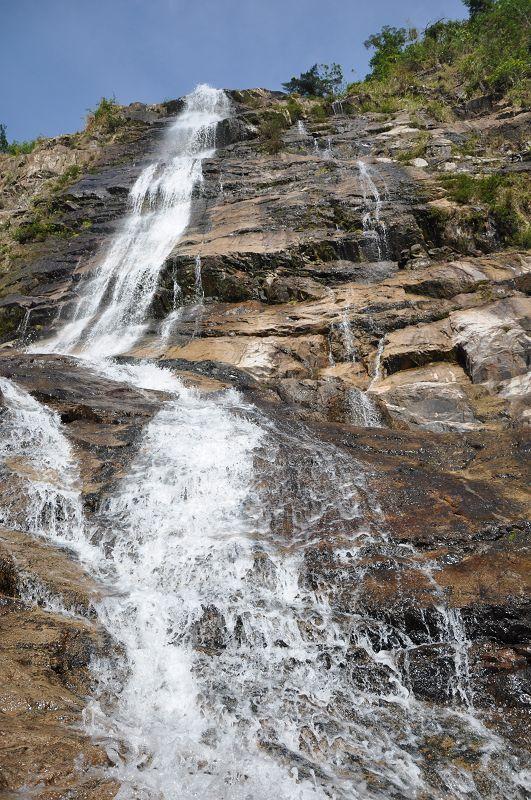 Національний лісовий парк «дяолошань», о. Хайнань