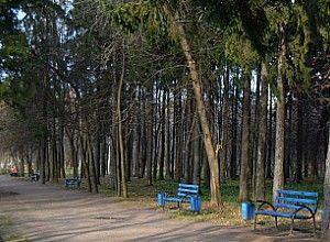 Парк 50-ти річчя радянської влади в муромі