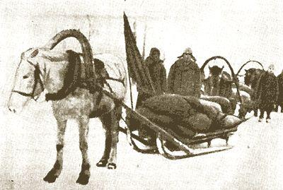 Гужовий перевезення зерна (с. Теньтюково, XX ст.)